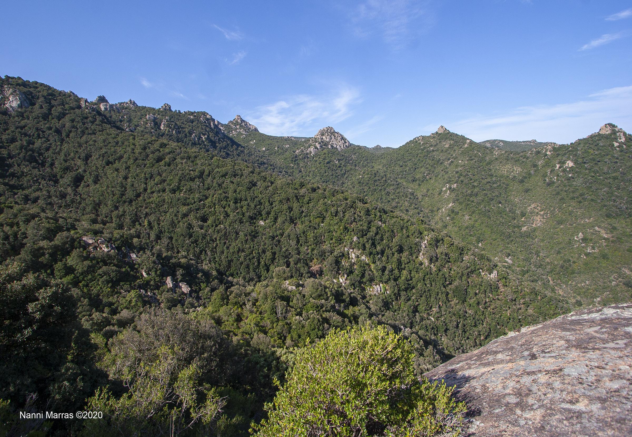 L'Oasi di Assai nel cuore della Sardegna ©Nanni Marras